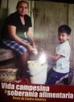 Vida campesina y soberanía alimentaria : voces de Centroamérica